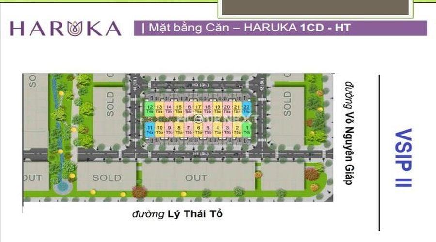 Mặt bằng căn nhà phố 1CD Haruka Terrace