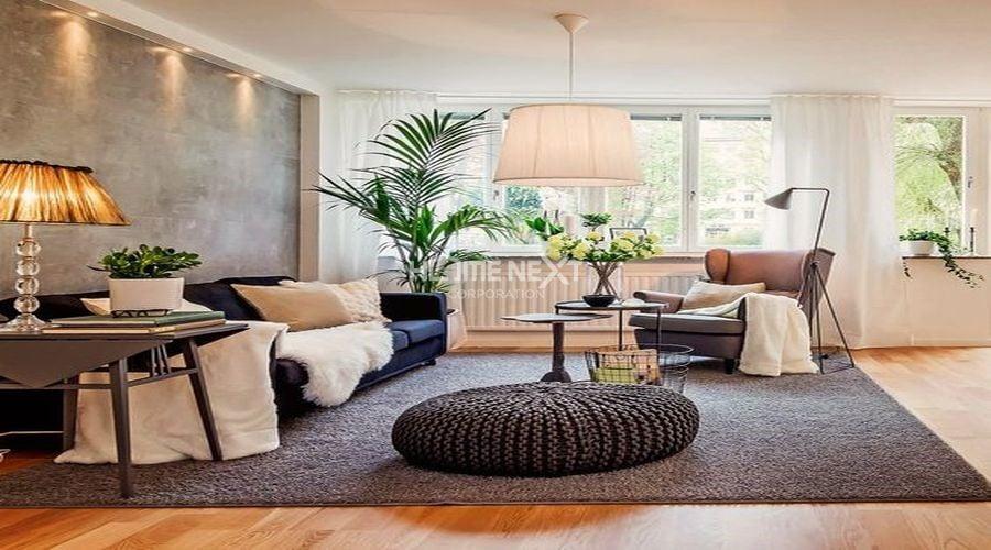Đưa cây xanh vào nhà giúp gần gũi với thiên nhiên hơn
