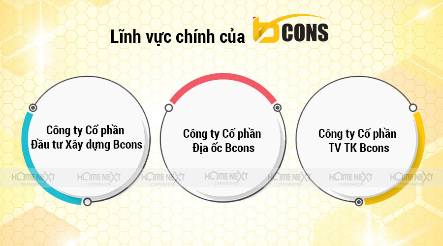 Lĩnh vực phát triển của Bcons