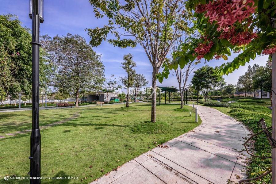 Khu vực tản bộ rợp bóng cây xanh