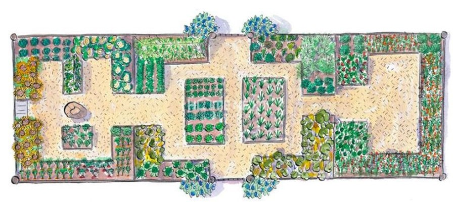 Bố trí cảnh quan sân vườn