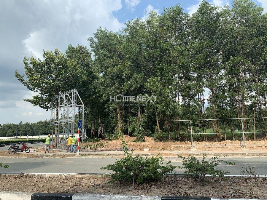 Hình ảnh thực tế hạ tầng tại dự án The Forest Suites