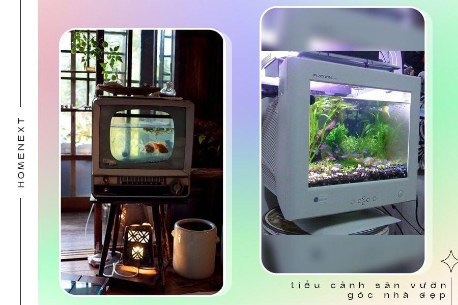 Tiểu cảnh hồ cá đẹp cho ngôi nhà hiện đại