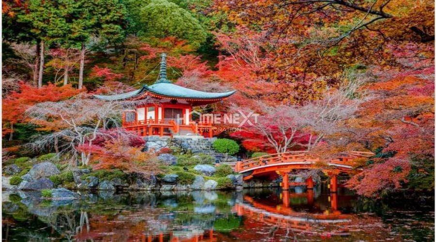 Vườn hoa Haruko