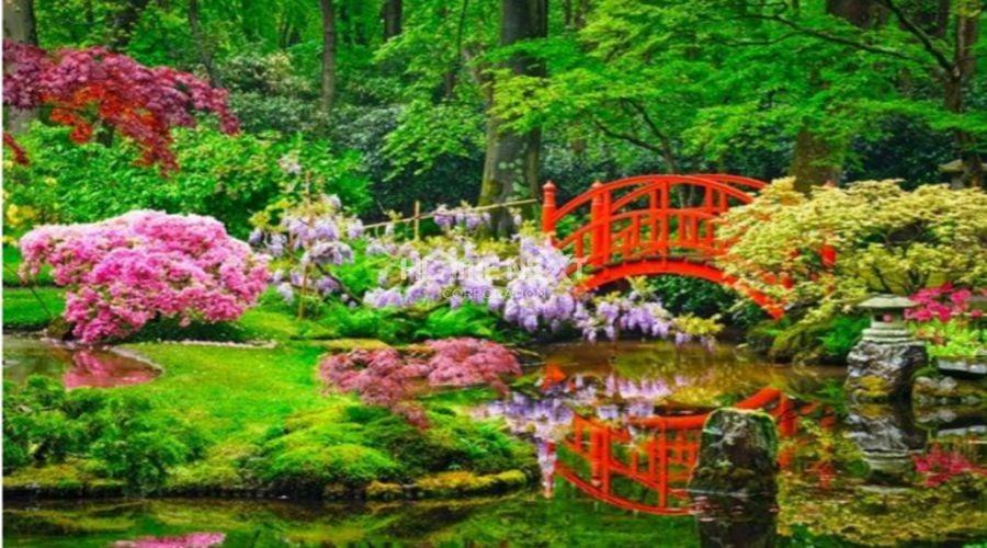 Vườn hoa Haruko (Mùa xuân)